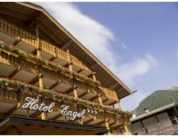 ENGEL HOTEL (CANAZEI)